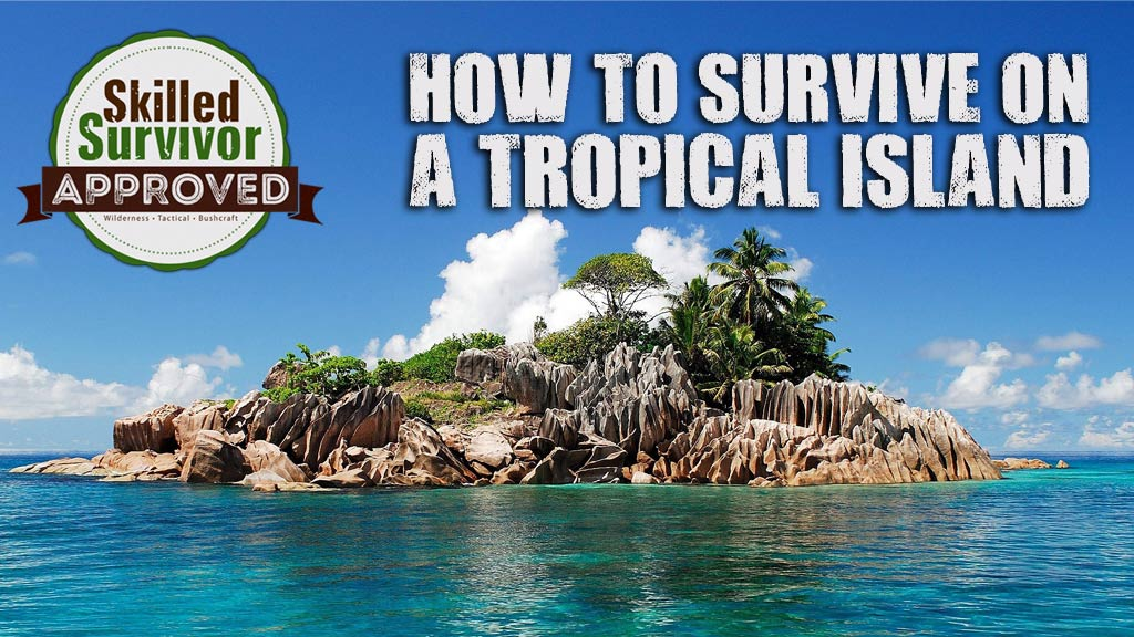 How to Survive on a Tropical Island?