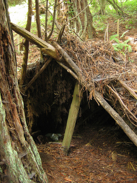 a picture of a lean to