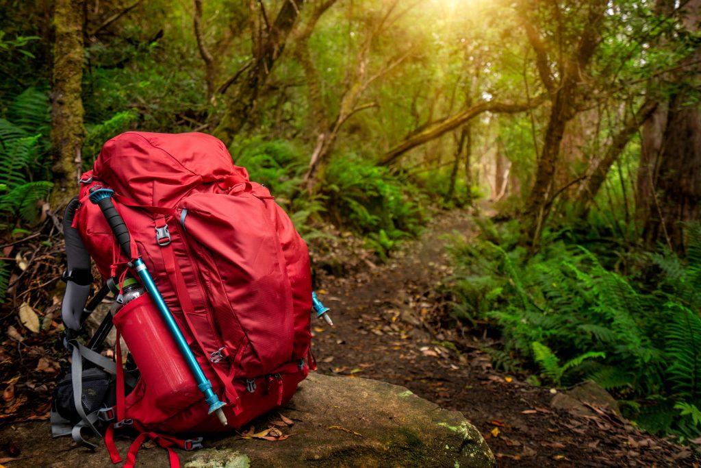 Survival bag backpack